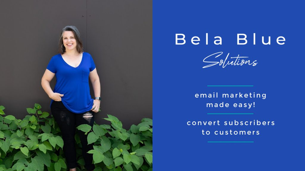 Bela Blue Solutions work with us! Learn more about our services and pricing on our site.