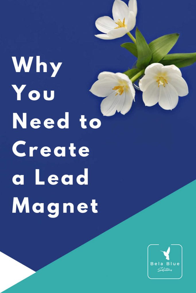 """Everyone says you need a lead magnet but let's talk about the """"why"""" you need to create a lead magnet. As a bonus, also get my list of 33 lead magnet ideas!"""